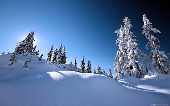winter-wallpaper-1920x1200-003 (900x637, 357Kb)