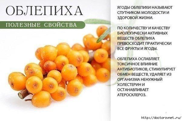 1420649575_Pol_za_oranzhevuyh_produktov7 (604x398, 125Kb)