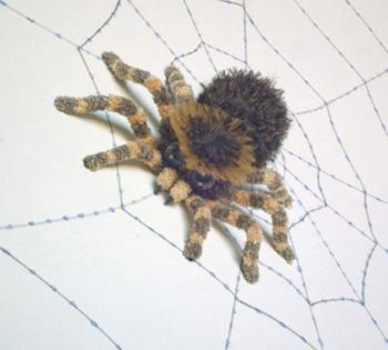 13 г (3) паук магнит к- (350x315, 67Kb)
