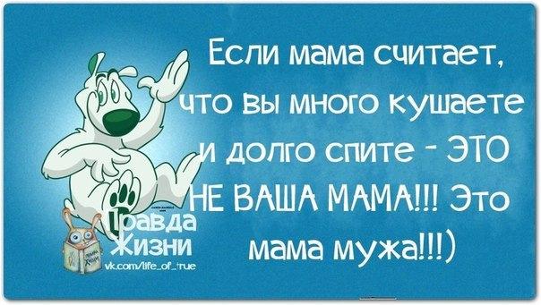 http://img1.liveinternet.ru/images/attach/c/0/119/49/119049687_37033231b5e80140154m750x740u4547c.jpg