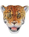 ������ леопард (397x500, 161Kb)