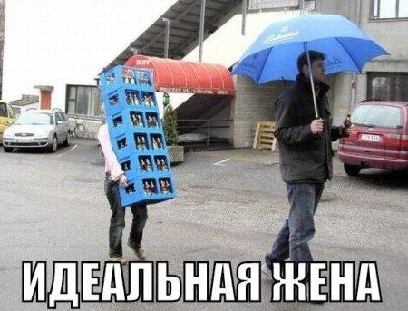 1420997643_1420725414_raznoobraznaya_3-35 (450x343, 41Kb)