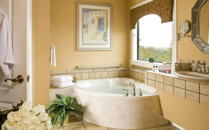 3085196_bathroom_design_01 (700x437, 40Kb)