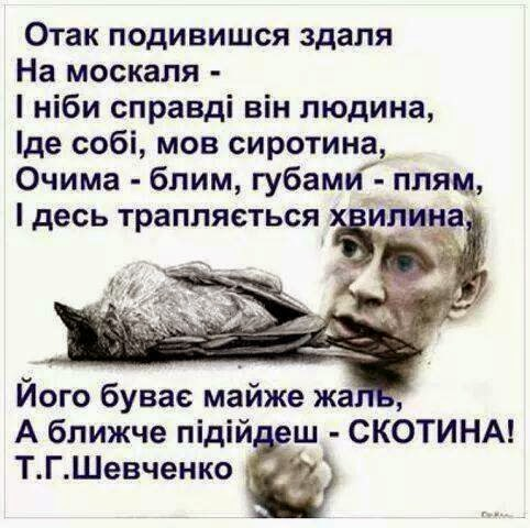 Украина импортирует из Европы вдвое больше газа, чем из РФ - Цензор.НЕТ 8948