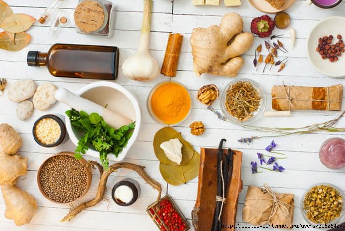 content_experiemental-meal-prep-david-allen-diet-081414 (700x469, 261Kb)