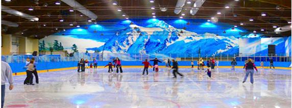 катание на льду (572x212, 223Kb)
