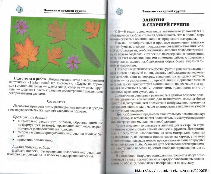 Апликация из природного материала в детском саду.page09 (700x579, 341Kb)