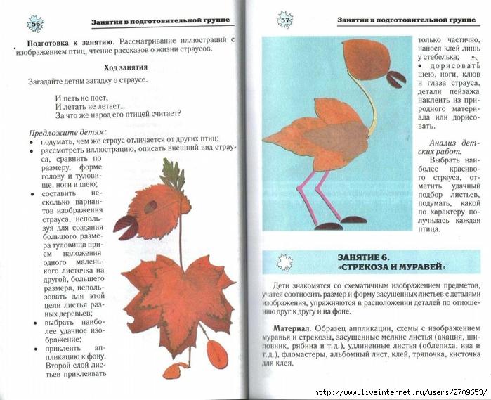 Апликация из природного материала в детском саду.page29 (700x569, 284Kb)