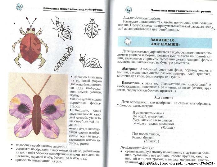 Апликация из природного материала в детском саду.page34 (700x539, 286Kb)