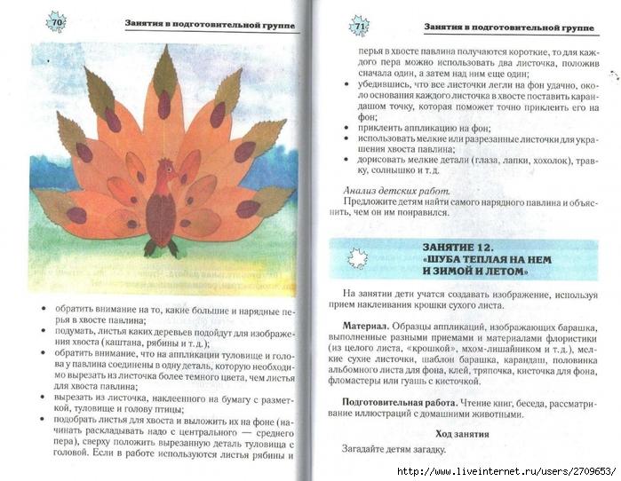Апликация из природного материала в детском саду.page36 (700x542, 291Kb)