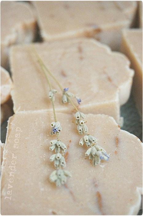lavender soap (465x700, 54Kb)