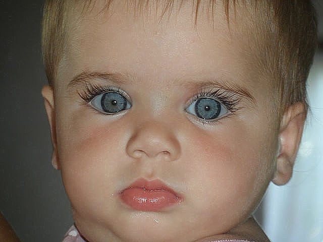 дети голубоглазка (640x480, 142Kb)