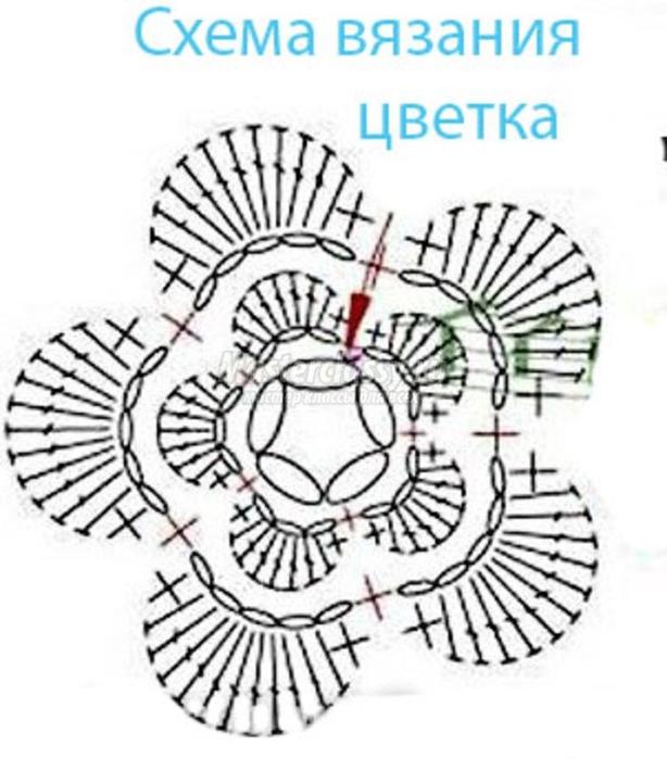 Пинетки с цветком крючком схемы