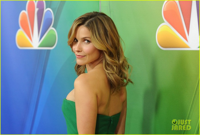sophia-bush-nbc-winter-tca-party-03 (700x473, 58Kb)