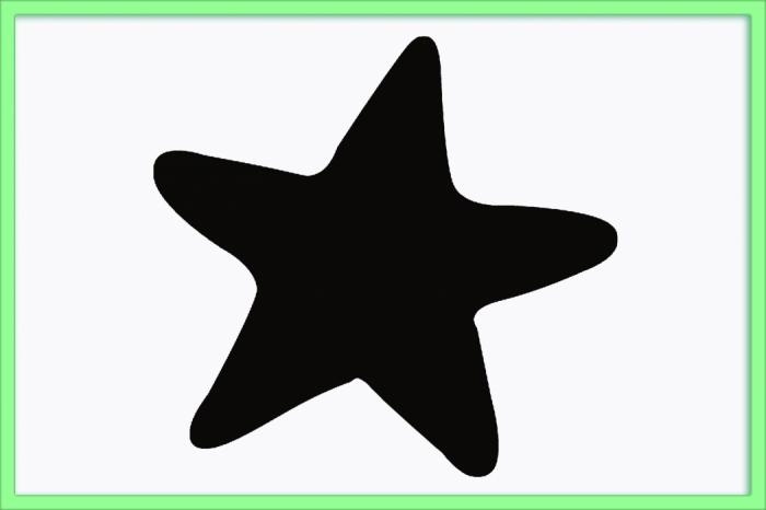 4844834_zvezda_1 (700x466, 105Kb)
