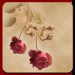 ава-Розы (250x251, 86Kb)