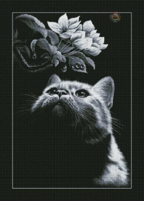 Кот с магнолией (504x700, 461Kb)