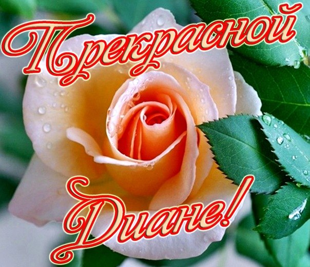 Поздравления с днем рождения подруге диане