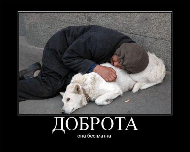 3245507_1389454026_demotivatori_lyubov378 (640x512, 49Kb)