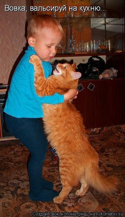1вальс на кухню кот (403x700, 84Kb)