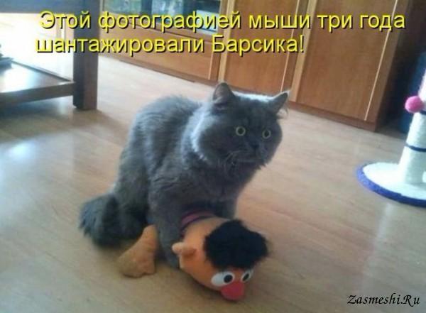 5680197_53SHantazh_1 (600x441, 54Kb)