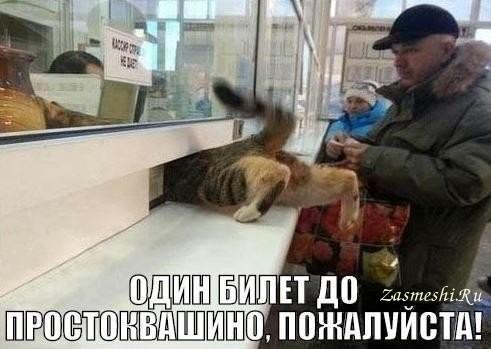5680197_462VProstokvashino_1 (491x349, 46Kb)