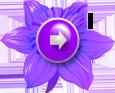 111442920_226 (115x93, 19Kb)