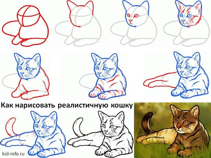 Нарисовать кошку своими руками