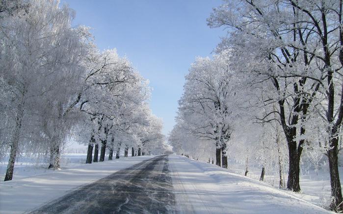 дорога зимой 11 (700x437, 428Kb)