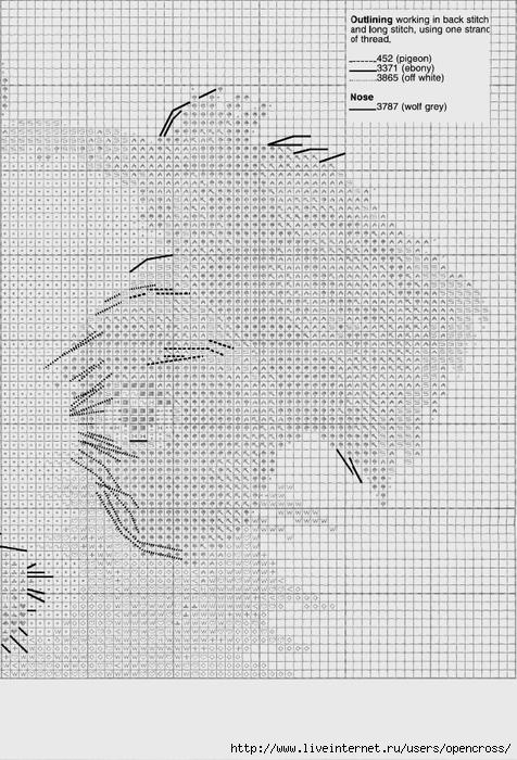 APSC748 Scruff_chart06 (476x700, 293Kb)