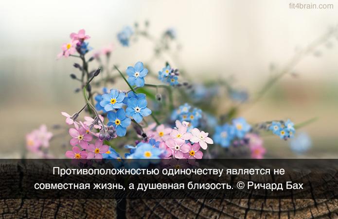 0_f1410_66d9e616_orig (695x451, 225Kb)