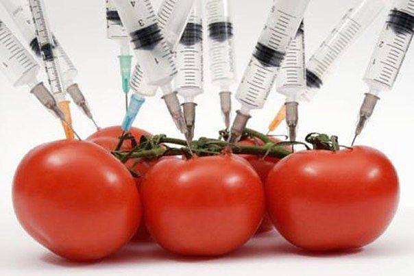 3925311_shpric_pomidori (604x403, 38Kb)