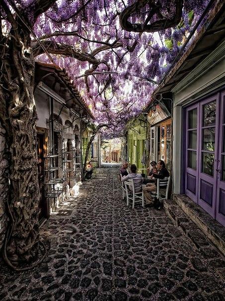 Моливос, Лесбос, Греция (453x604, 126Kb)