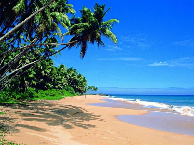 vacation (660x495, 295Kb)