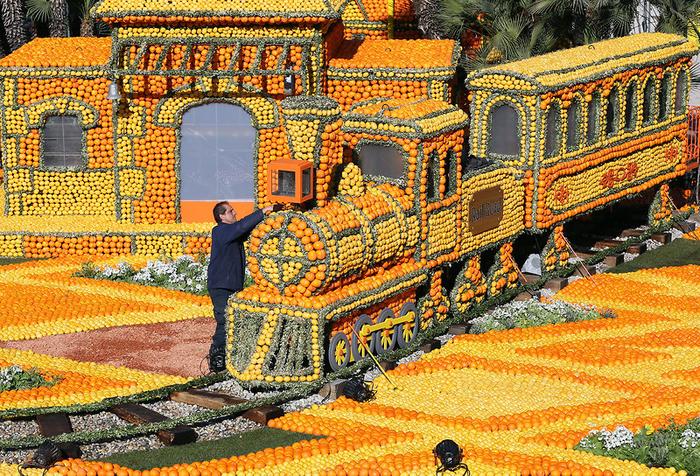 фестиваль лимонов7 (700x476, 752Kb)