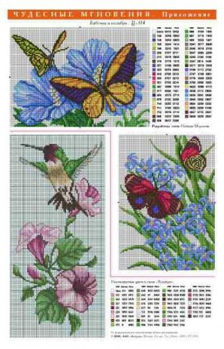 314bab+kolibri (322x500, 190Kb)