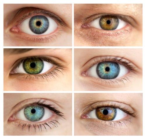 в пары с одинаковым цветом глаз это