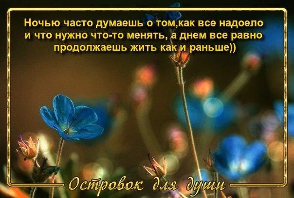 3416556_DN6tty5DnzYf (604x406, 58Kb)