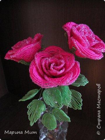 Восхитительные розы из бисера. Мастер-класс (360x480, 136Kb)