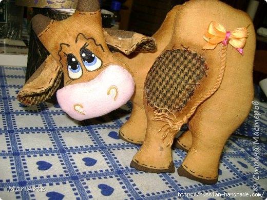 Шитье кофейных игрушек. Смешная КОРОВА (1) (520x390, 164Kb)
