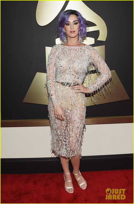katy-perry-grammys-2015-red-carpet-10 (458x700, 77Kb)