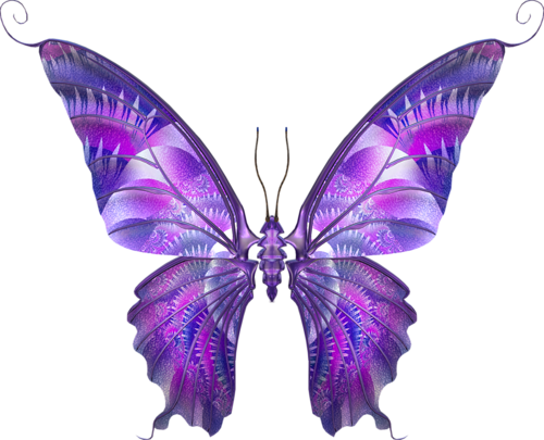 бабочка6 (500x405, 220Kb)