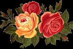 роза1 (150x101, 30Kb)