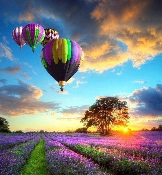 air balloon (560x604, 75Kb)
