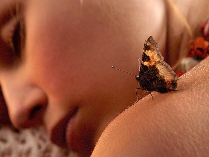 счастье подобно бабочке. чем больше ловишь его тем больше оно ускользает