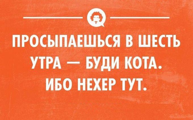 11_10 (680x423, 216Kb)
