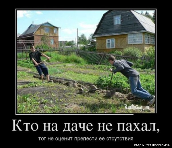 1376299007_demotivatory_10 (600x517, 146Kb)
