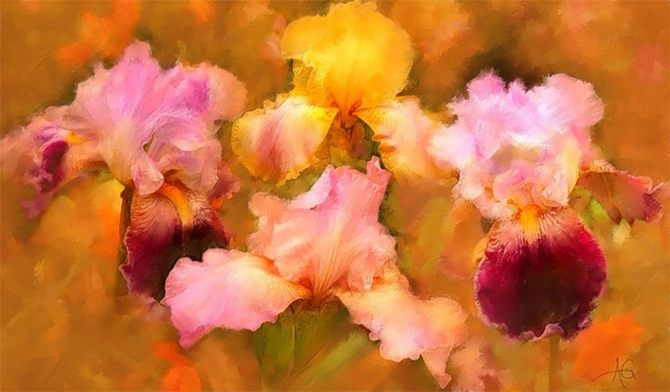 Alberto_Guillen_Flower_Paintings_11 (670x392, 187Kb)