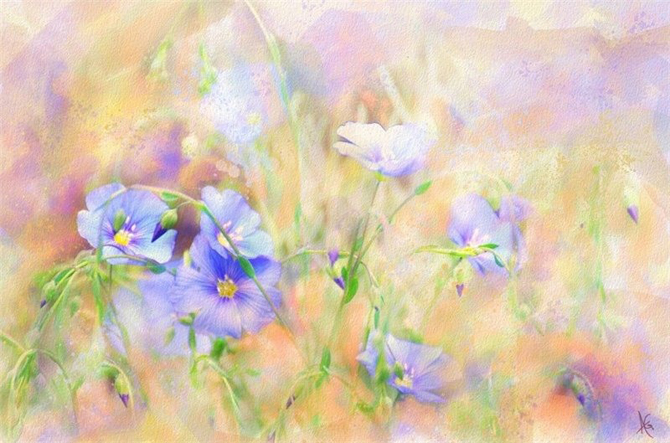 Alberto_Guillen_Flower_Paintings_12 (670x443, 250Kb)