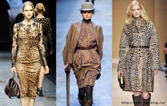 4121583_61070_leopardfashion1 (550x350, 137Kb)